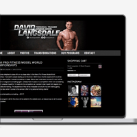 David Langsdale Website Design